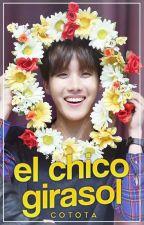 El Chico Girasol [YoonSeok] by CototaCP
