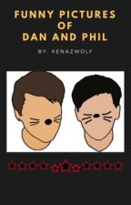 Funny pictures of dan and Phil  by xenazwolf