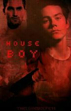 House Boy  (Sterek AU) by TheLoneWolfe11