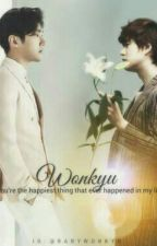 Beside Our Story - Wonkyu by babymoomoo1014