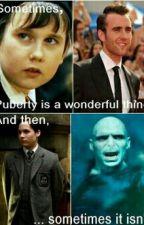 Harry Potter memes by corgilover1