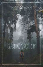 Cardinal Directions by knivves