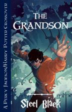 Grandson of Voldemort (Percy Jackson/Harry Potter Crossover) by steelblack101