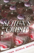 Sehun's Crush ✧ sebaek | short story [✔️] by velvetfrnk