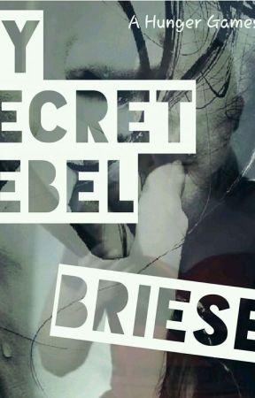 My Secret Rebel by BRIESEY
