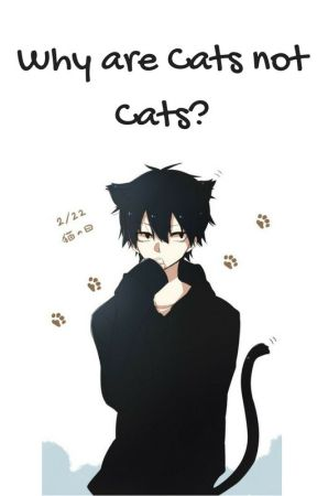 Why are Cats NOT Cats?! by heyitspj1