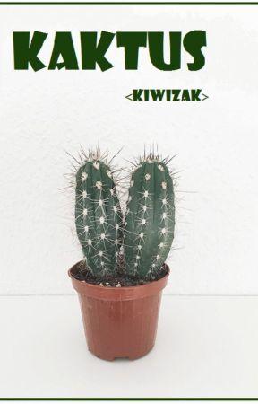 Kaktus by kiwizak