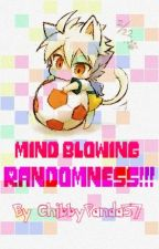 Mind Blowing Randomness by ChibbyPanda57