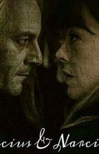 Lucius & Narcissa,  historia de un gran amor by SofiMalfoyBlack