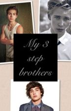 My 3 Step brothers by ef03102003