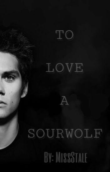 To Love A Sourwolf { Sterek } BOYXBOY
