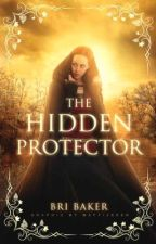 The Hidden Protector (Book 2) by BriBaker415