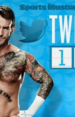 Tweeting with a twitter fake (cm punk) by SanshaHuxtable