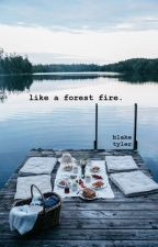 like a forest fire | camren (au) by Blake0Tyler