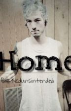 Home ( Josh Dun X Reader ) by noDunsintened