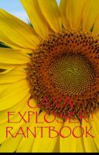 CA VA EXPLOSER !  RANTBOOK by mayou82