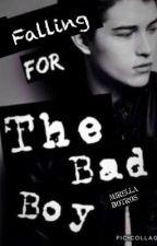 Falling for the bad boy (IN PROGRESS) by MirellaBotros