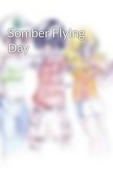 Somber Flying Day by Jvisser