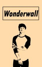Wonderwall || Cake Hoodings by BichoHood