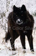 That Color Silver by greeknerd528