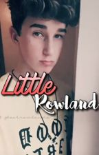 little rowland | hbr by bookrowlands