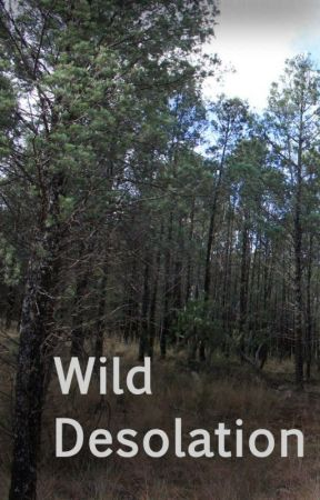 Wild Desolation by MrAutonomist