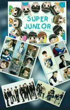 SUPER JUNIOR WITH ELF by FhauziahChairunnisa