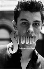 Studio- Shawn Mendes by youtubefreak2