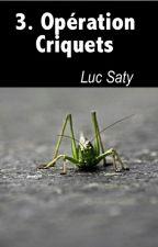 3. Opération Criquets by lucsaty