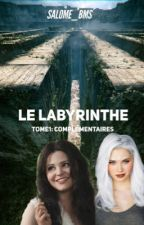 Le labyrinthe  by 4ever_2gether