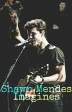 Shawn Mendes Imagines  (German) by sarah_mendes152