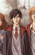 Harry Potter Whatsapp #Wattys2017 by Harry-Potter17