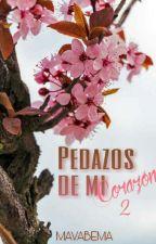 Pedazos de mi corazón 2  by mavabema