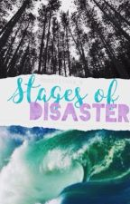 Stages Of Disaster  by ppollinna_k