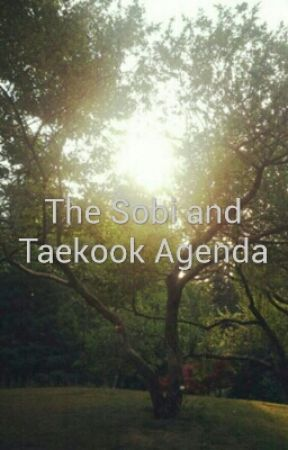 The Sobi and Taekook Agenda by minkassi