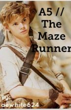 A5 // The Maze Runner by aewhite624