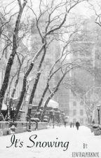 It's Snowing  by centralperknyc