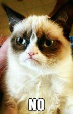 The Kitty That Just Said NO by PotatoKittchen