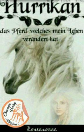 Hurrikan-Das Pferd welches mein Leben verändert hat! by Rosensonne