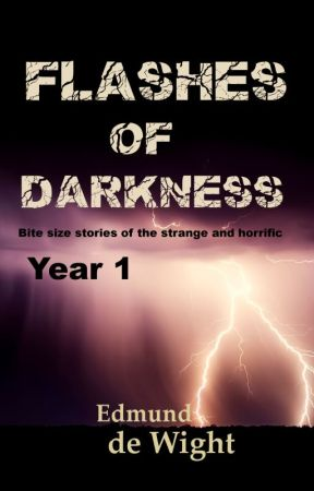 Flashes of Darkness Year 1 by EdmunddeWight