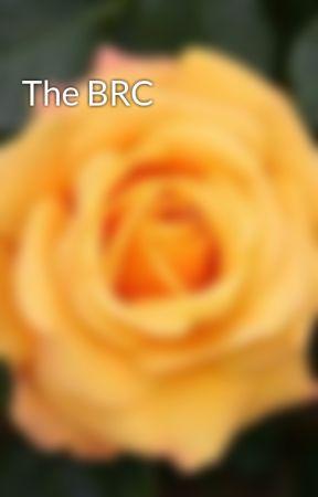 The BRC by KitkatPanda1670