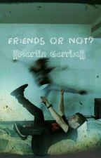 Friends or not? ||Martin Garrix|| by saragrx