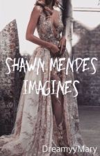 Shawn Mendes Imagines by DreamyyMary