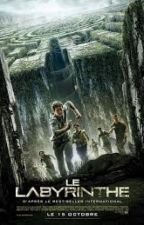 Newt : Le Labyrinthe (Le Labyrinthe,  Tome 1) by camillefantasybook