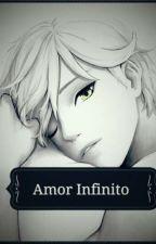 Amor Infinito ( Adrien/Chat Noir y Tu ) by Otuka17