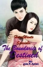 The Boundaries of Destined by JoieAmen