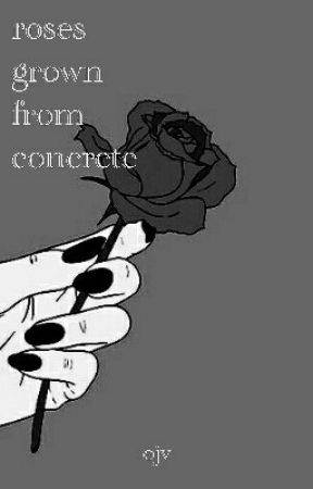 roses grown from concrete by localravioli