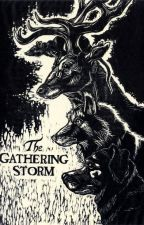 The gathering storm || HP fan fiction [POZASTAVENO] by ArtMasterpiece