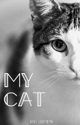 Yan - My Cat