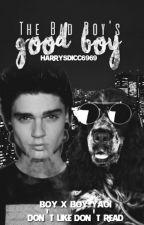 The Bad Boy's Good Boy by evanergy